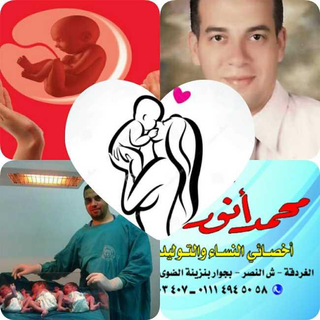 دكتور  محمد أنور قنصوة  أخصائى النساء والتوليد والعقم الغردقة