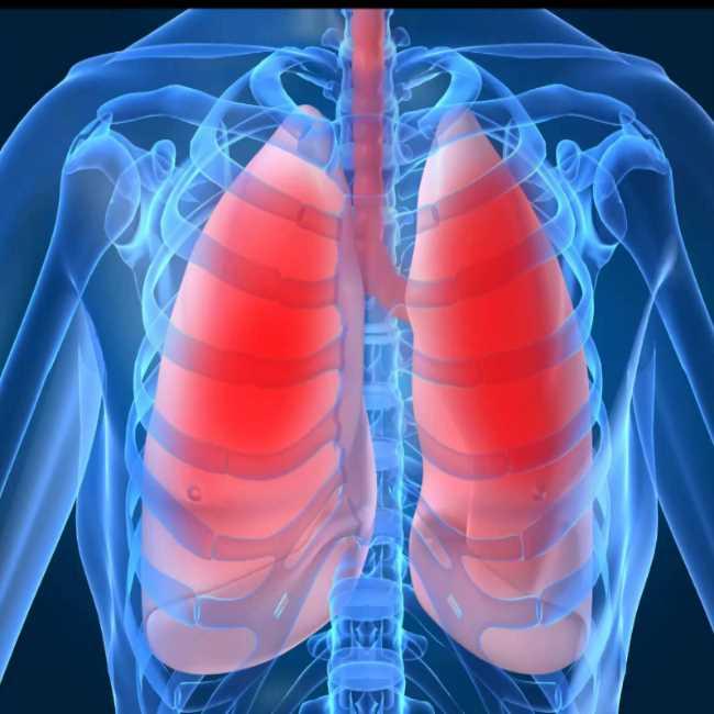 دكتور  وائل عمارة  إستشارى أمراض الصدر و الحساسية الجيزة